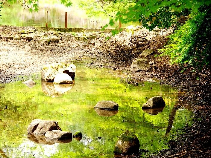 底なし伝説の池