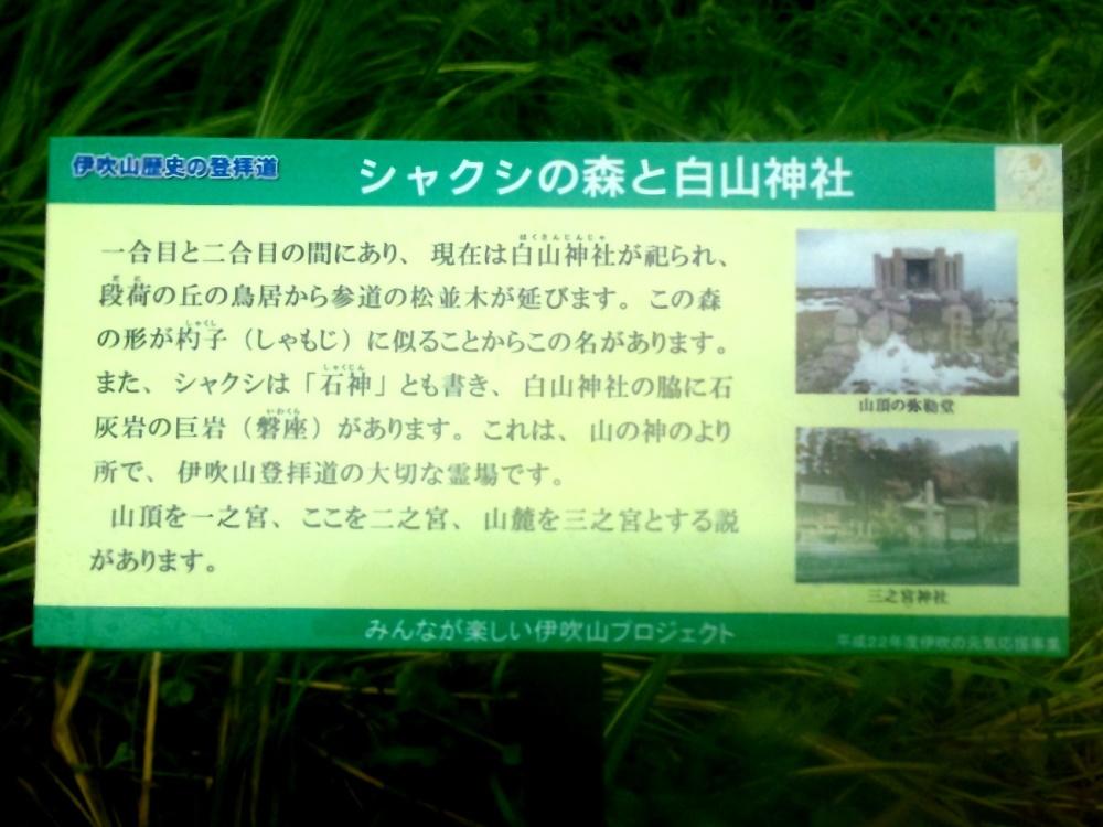 シャクシの森と白山神社の標識