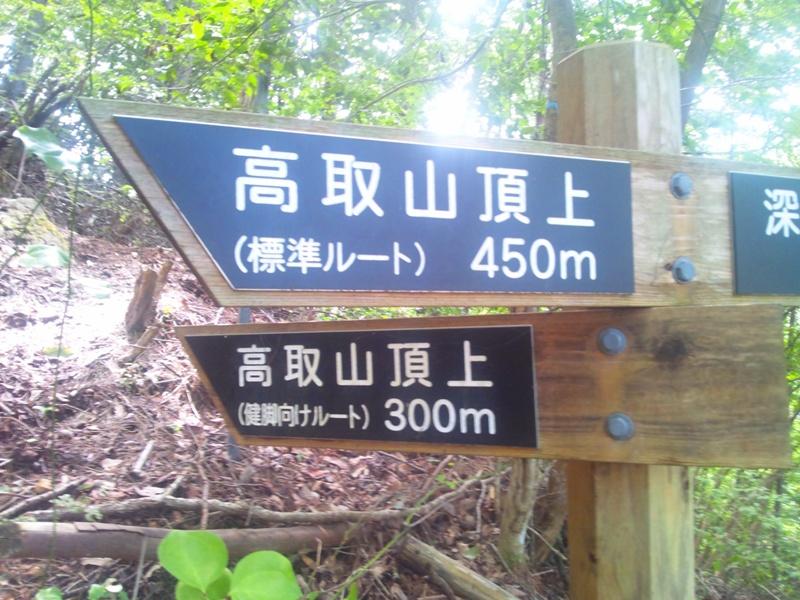 登山道の分岐標識