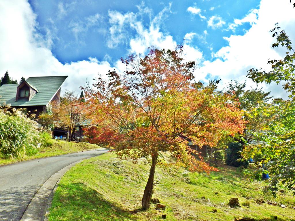 24b コテージ村の紅葉