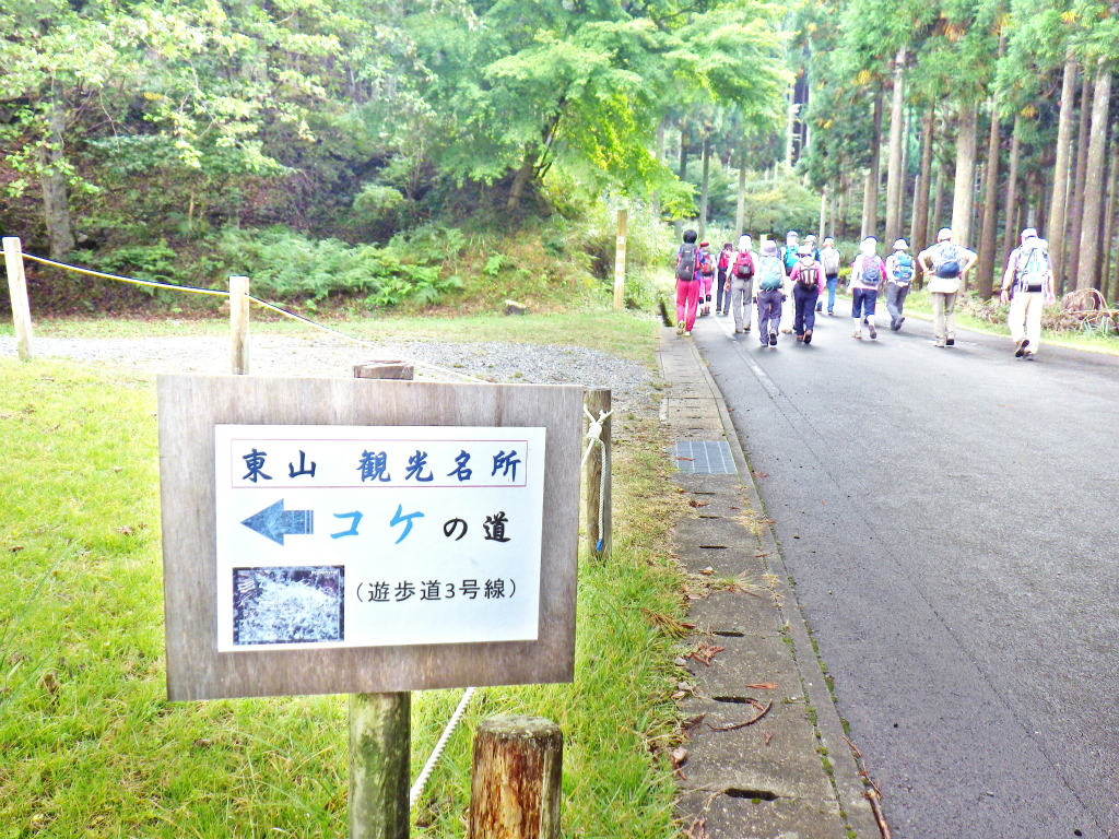 04a 遊歩道3号分岐