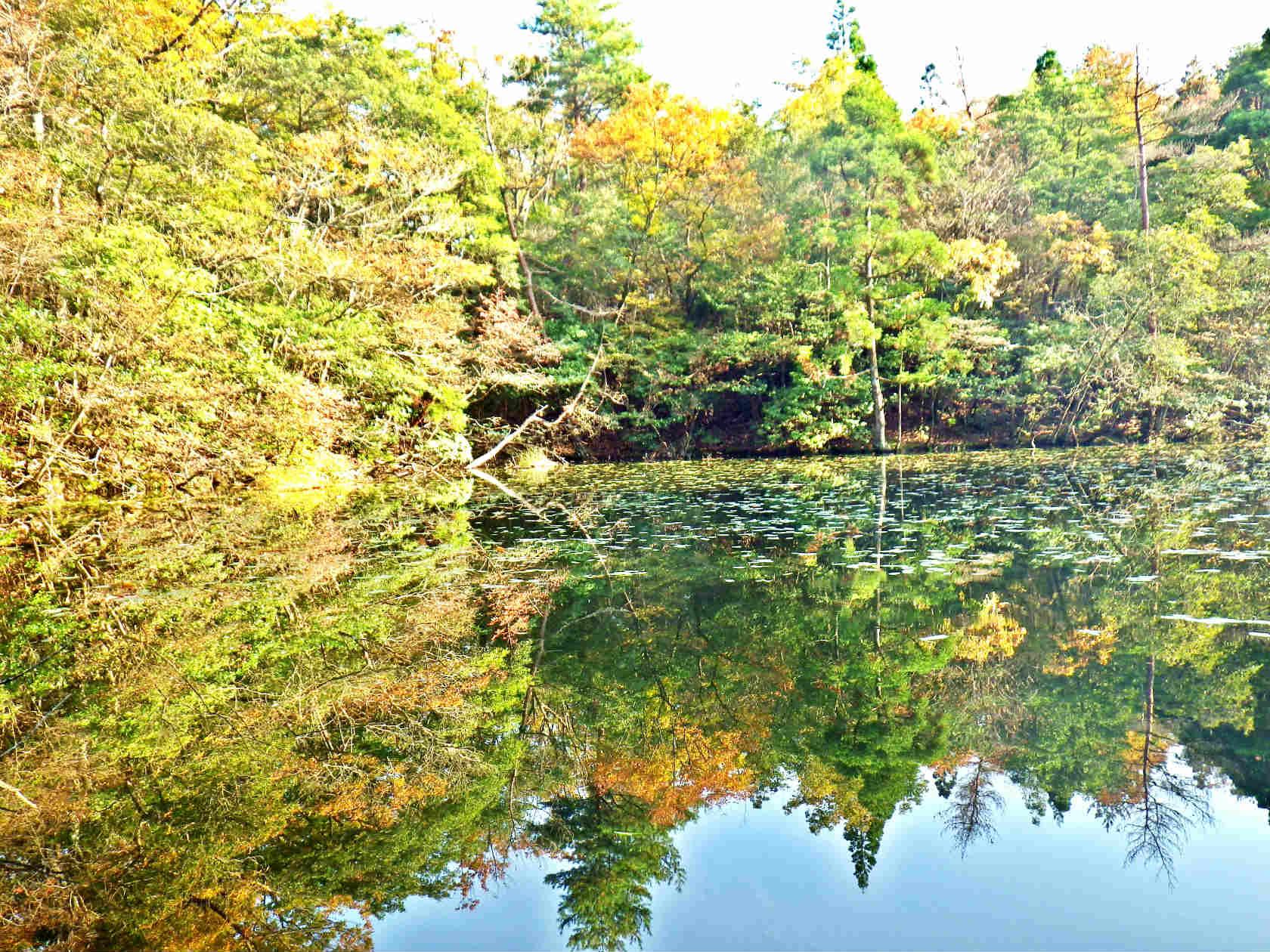 21b ノタノホリ水面の紅葉
