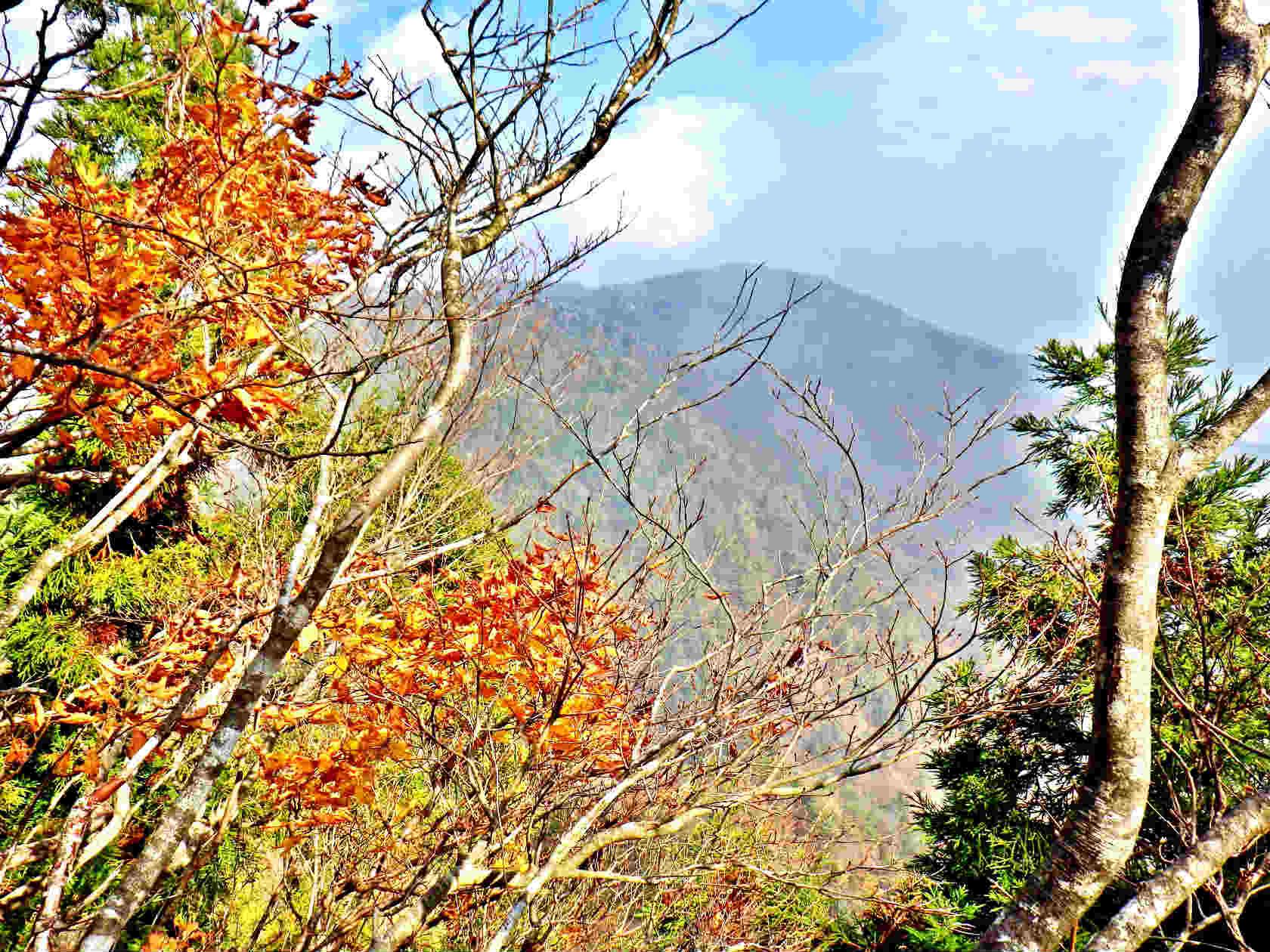 15a 紅葉と釈迦岳