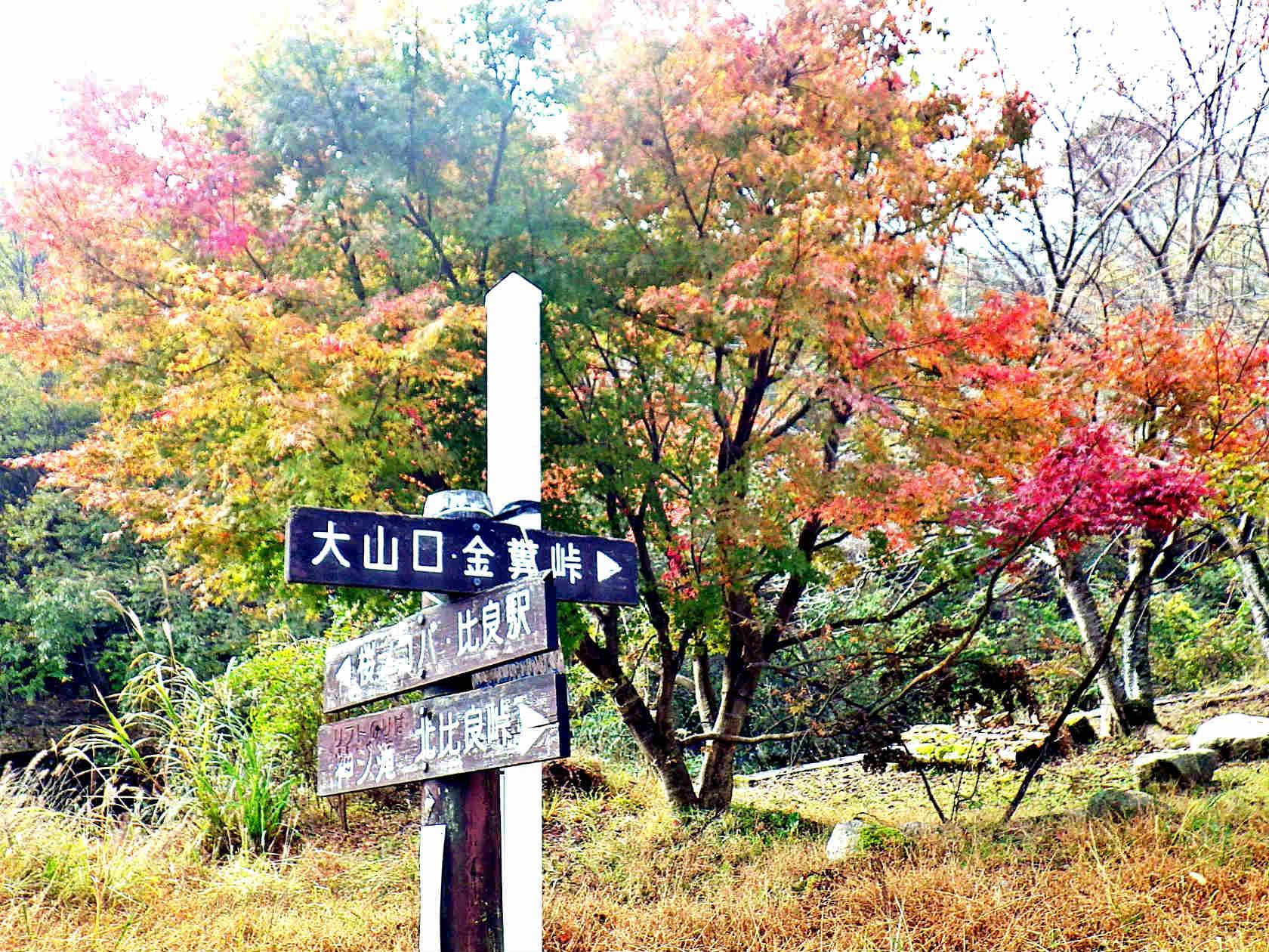 02a 登山口の標識