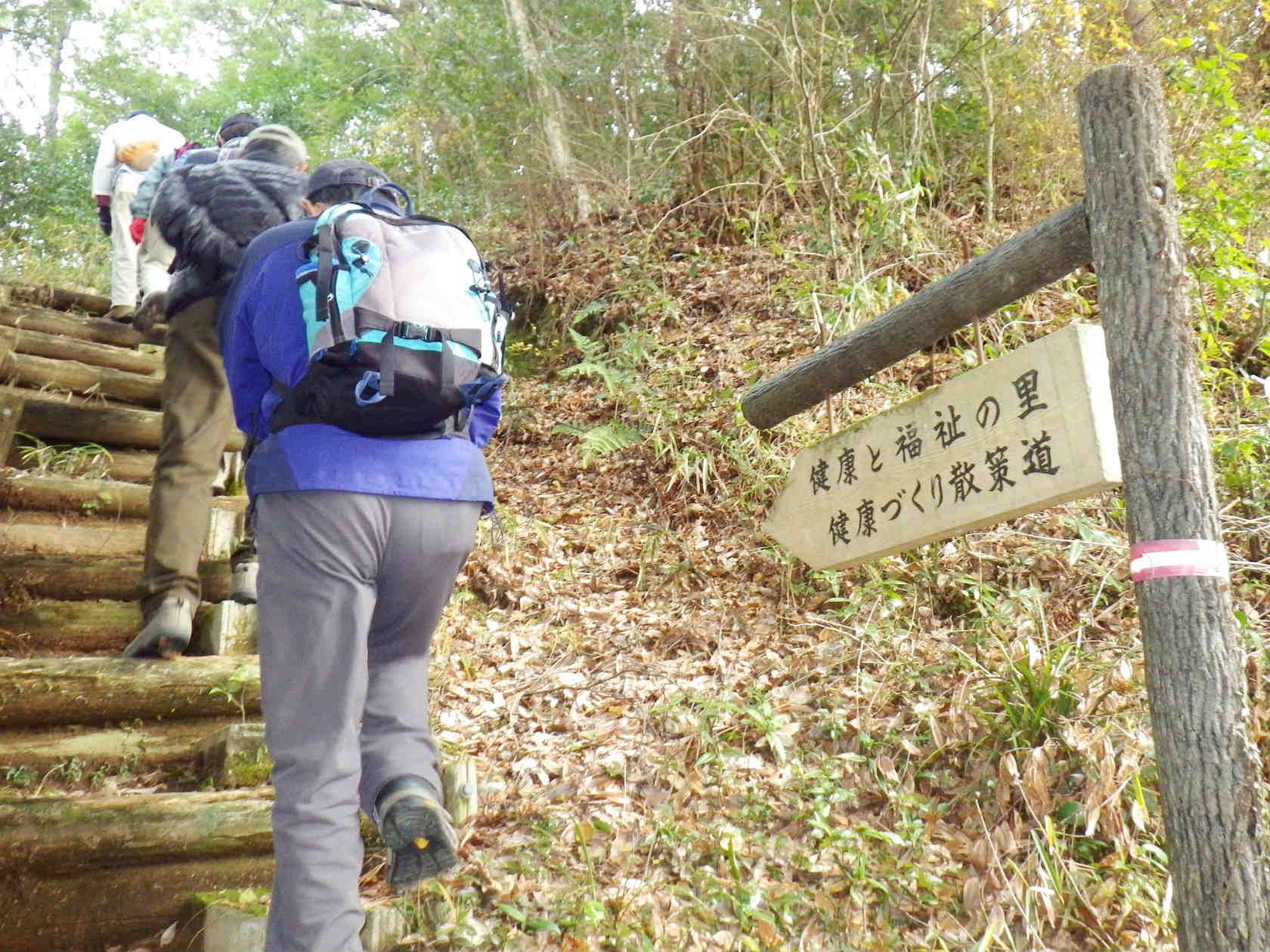 05b 丸木の階段を登る