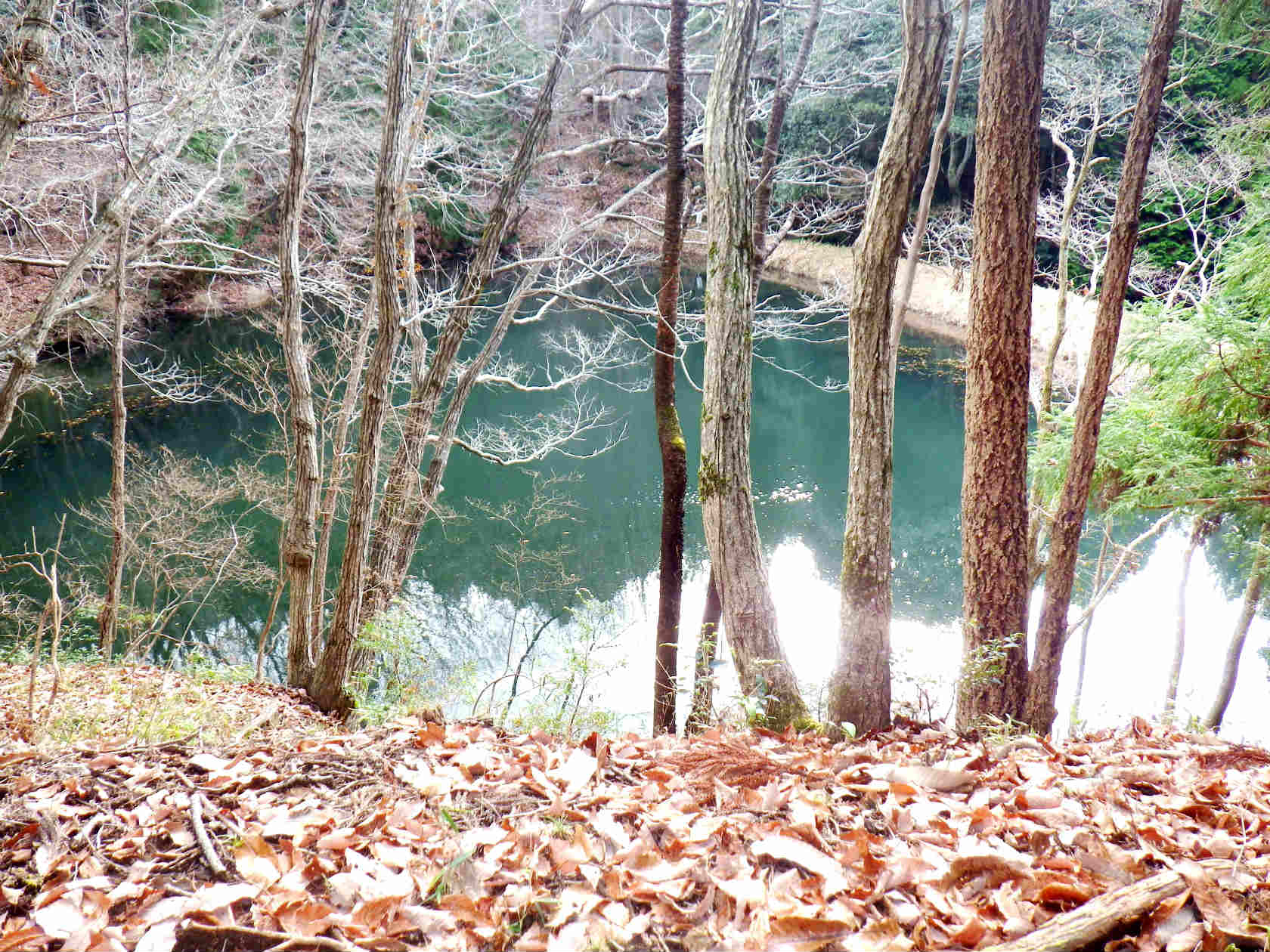 22b 薬師堂の下の池