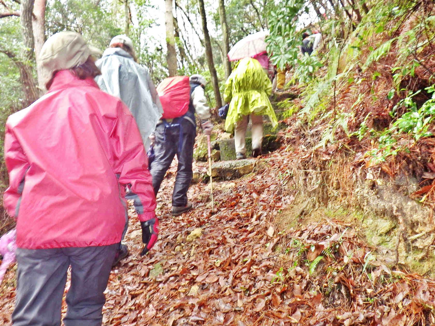 08b 落ち葉の道から石段へ