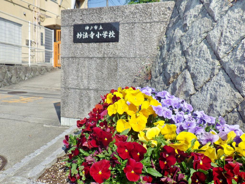 11b 妙法寺小学校前を通過