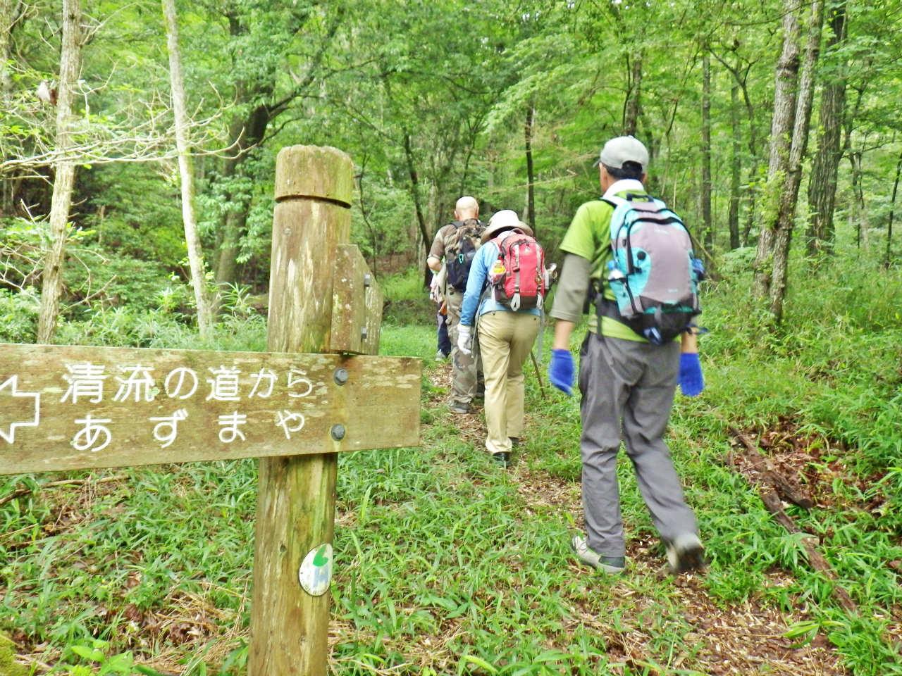 09a 金比羅道を登る