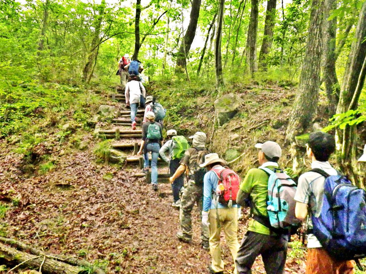 07a 木の階段を登る