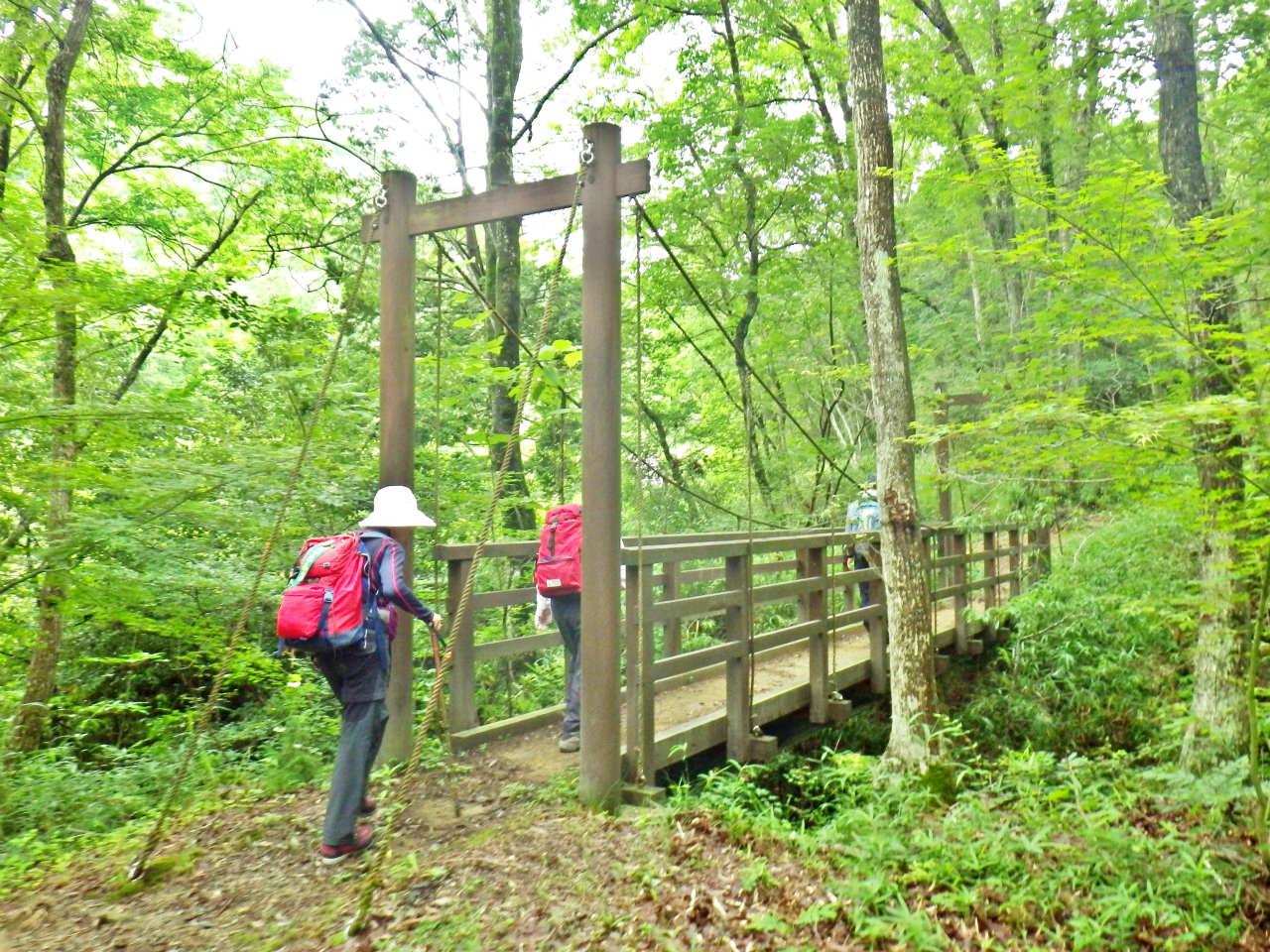 06b 木の吊橋を渡る