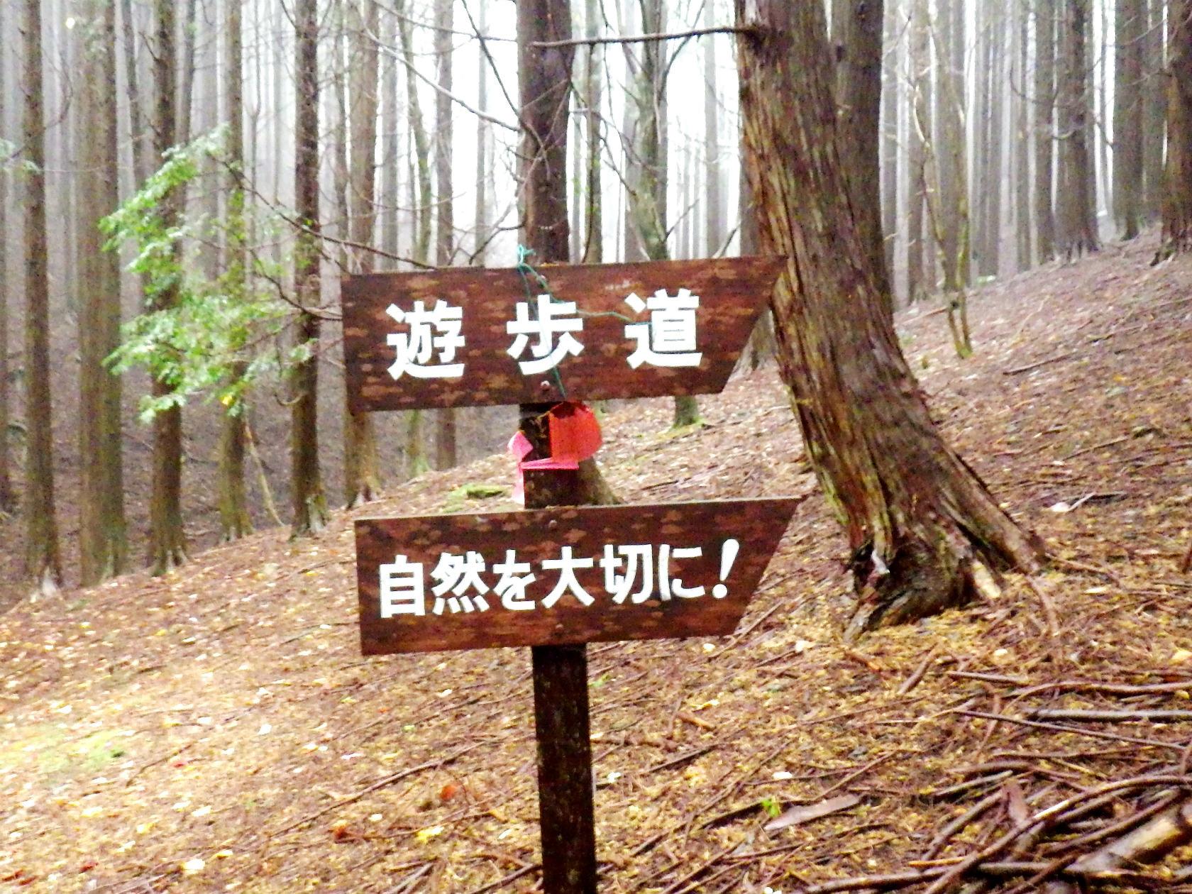 03b 遊歩道の標識