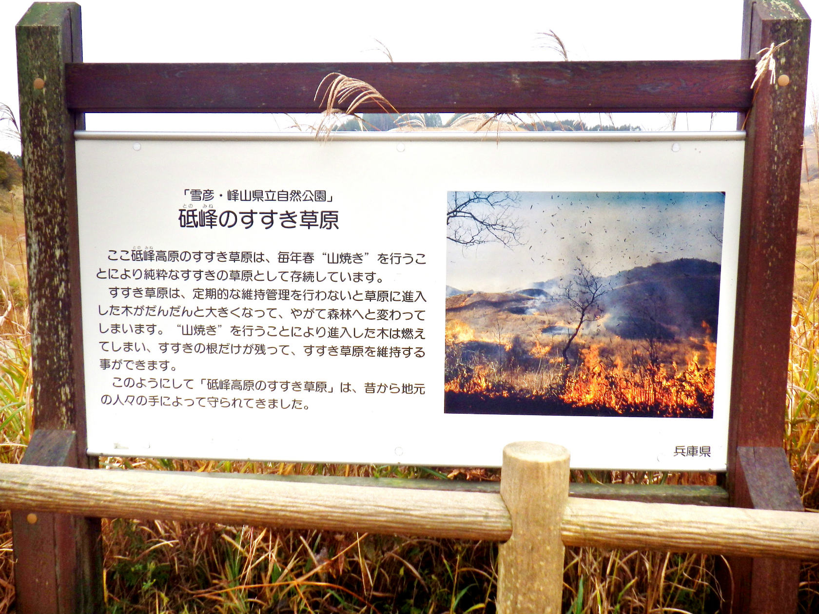 10b すすき草原の説明板