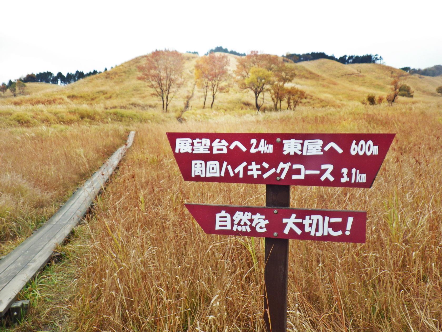 12b 草原の木道