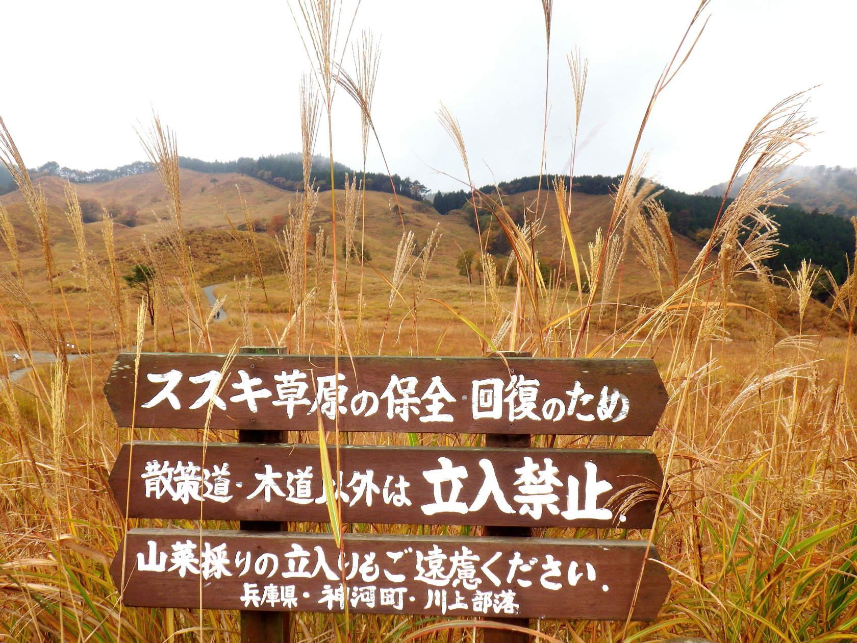 11a ススキ草原保全の立札