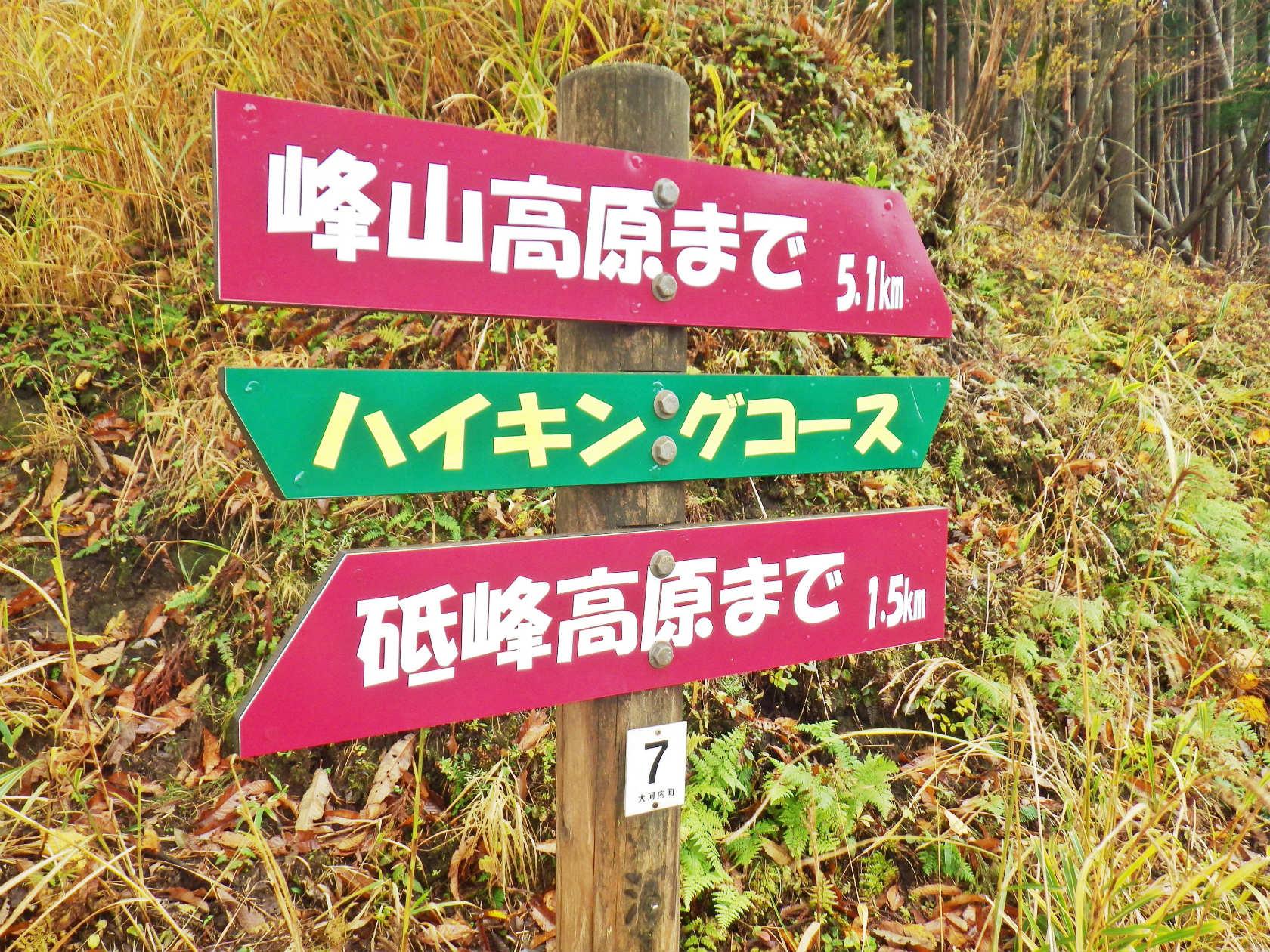 15a 峰山高原への標識