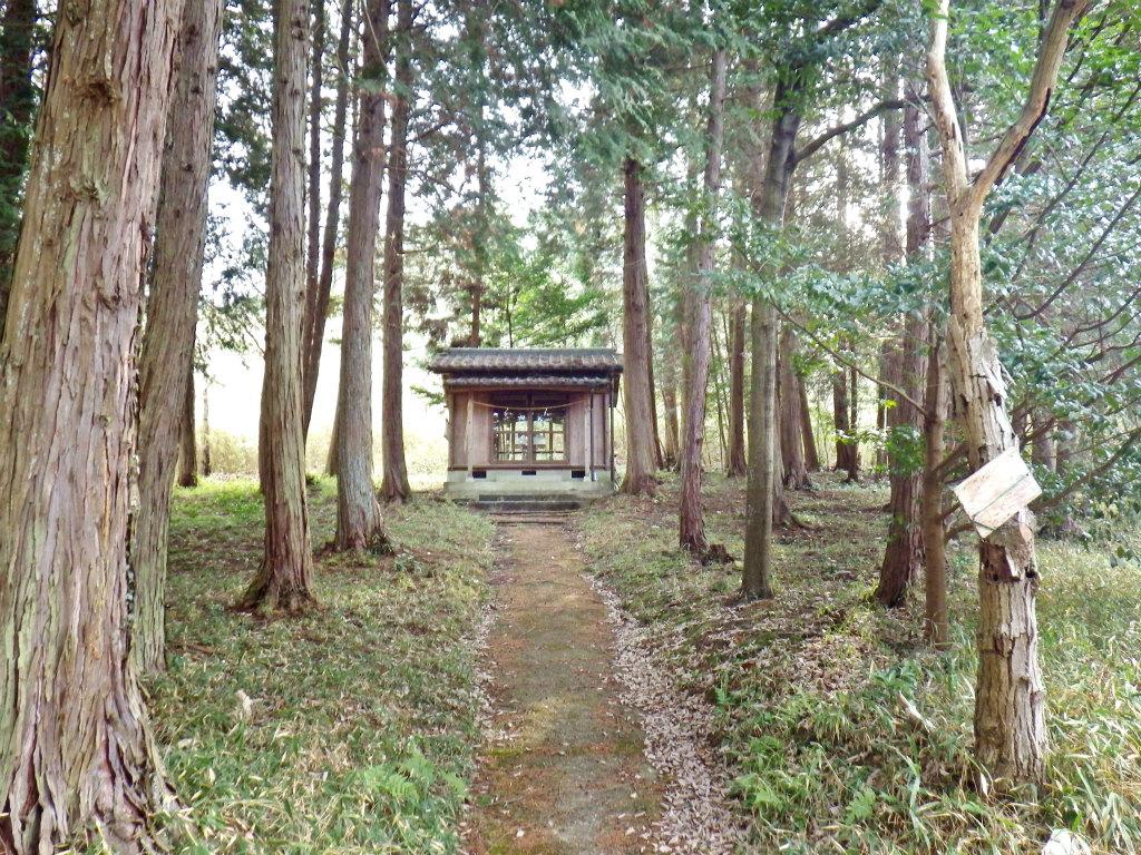 03a 林の中の祠