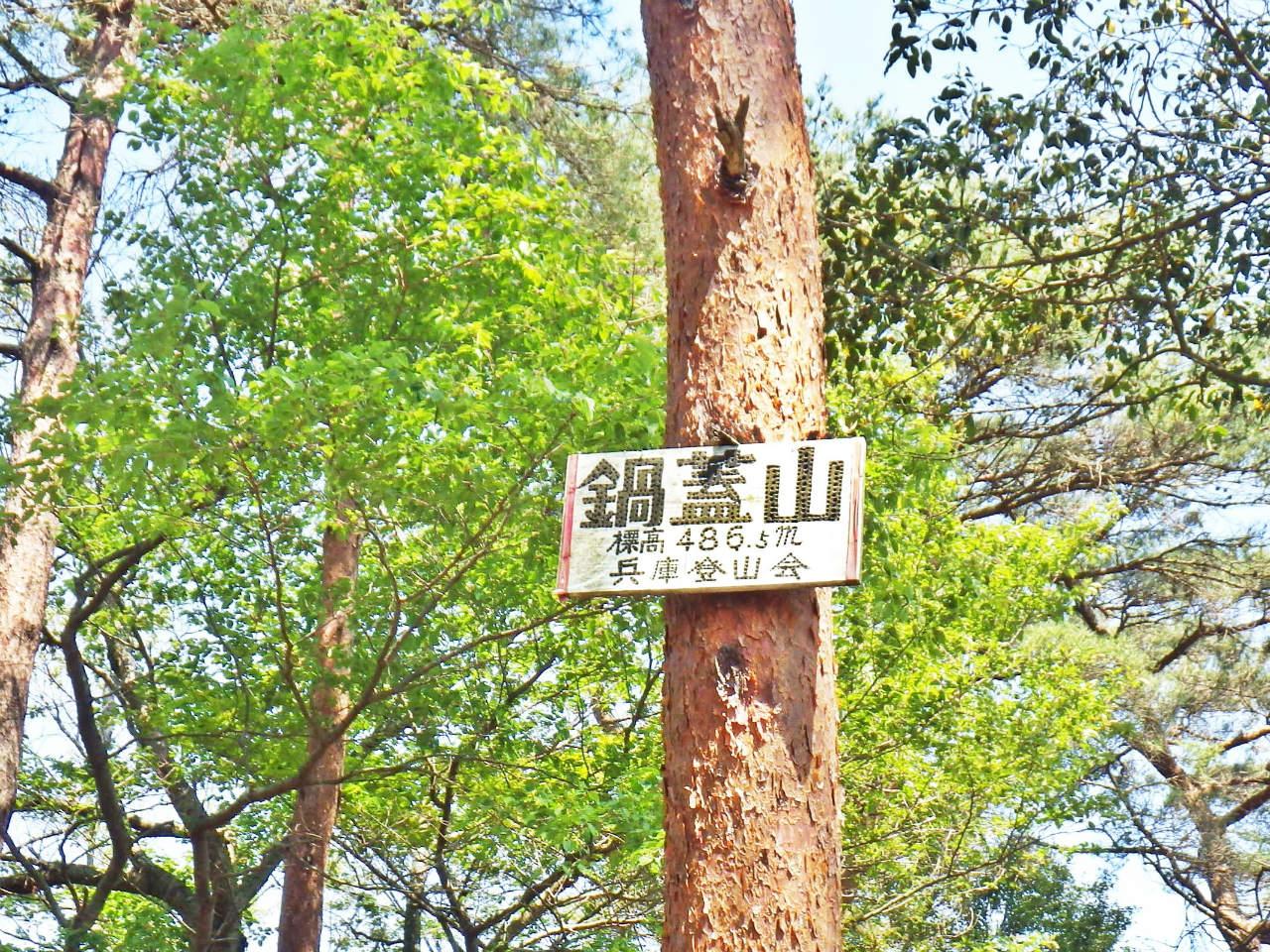 15b 樹上の山頂標識