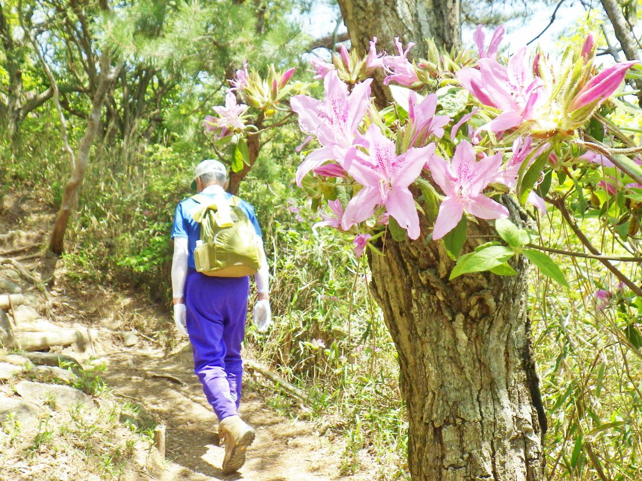 13a 菊水山を登る