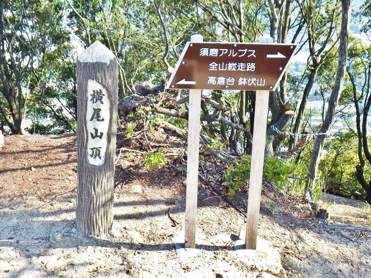 06b 横尾山頂