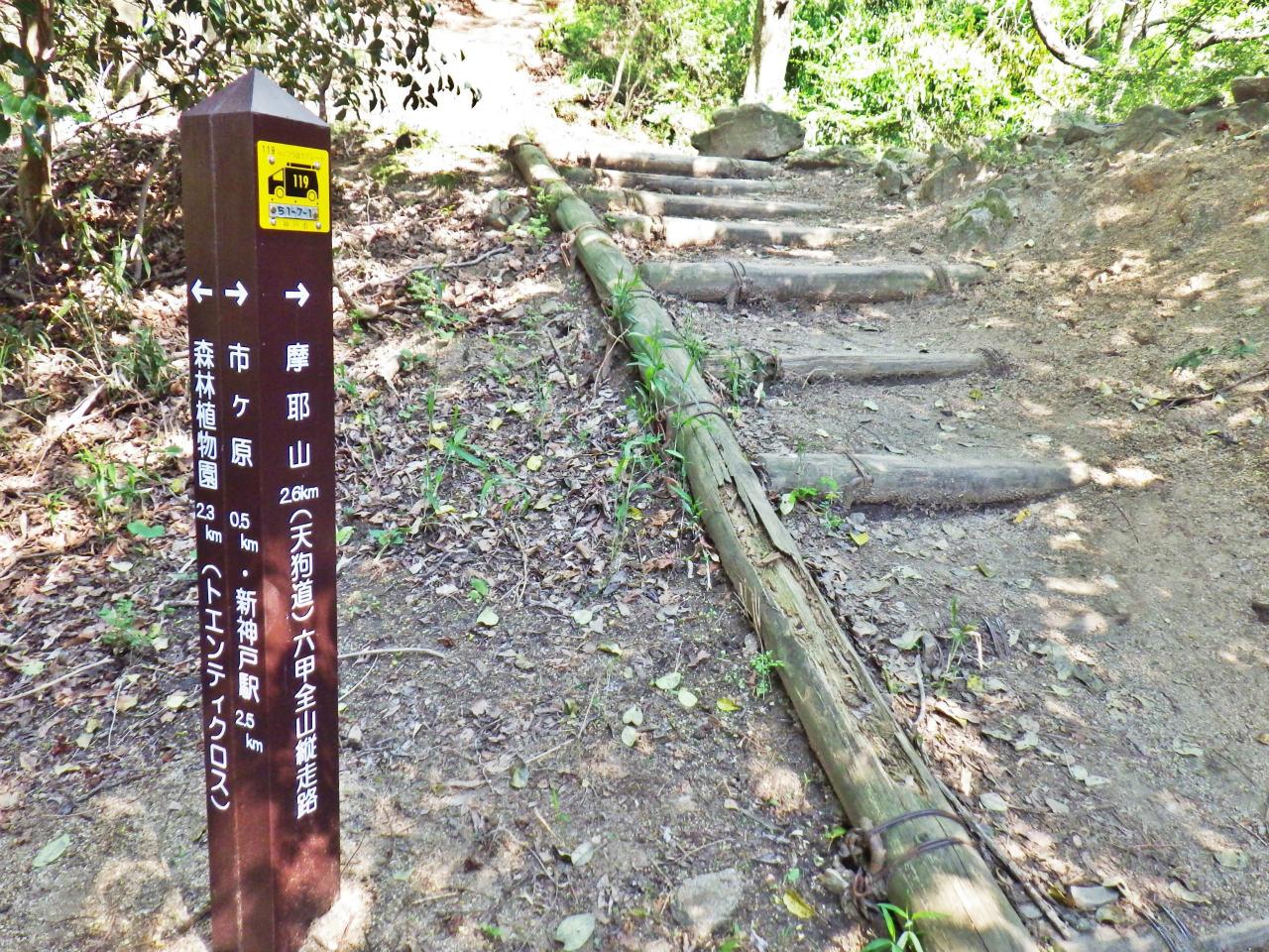 17b 天狗道を登る