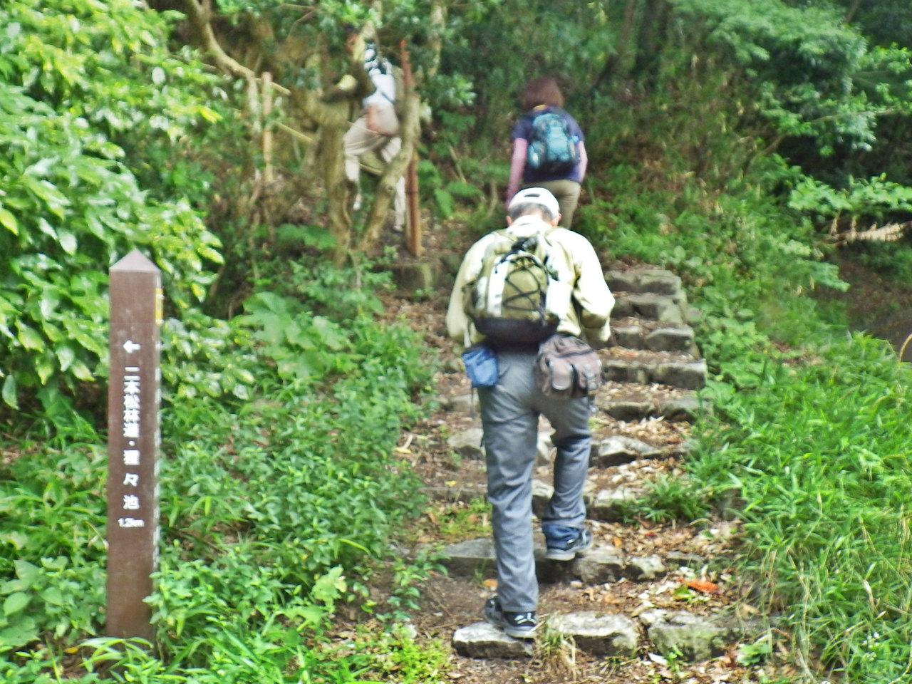 14b 再度山歩道へ進む