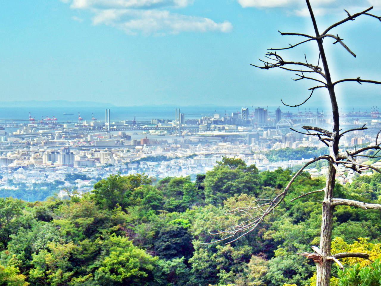 07a 東神戸港方面の眺め