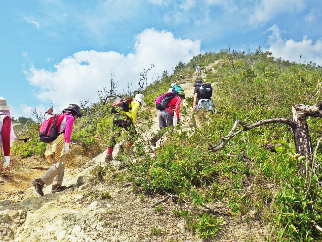 13b 鷹ノ巣山方面へ登る