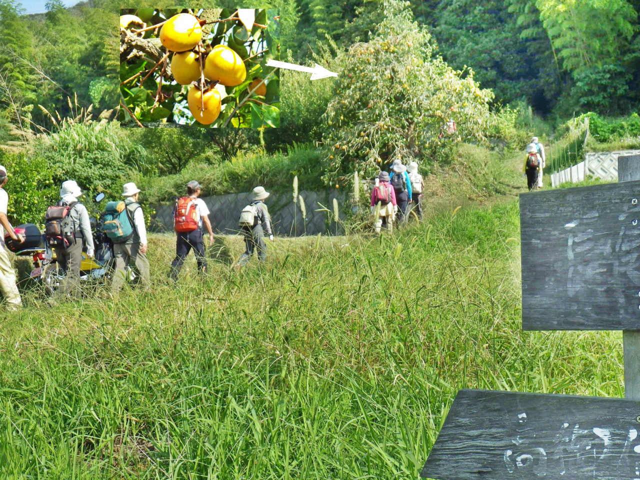 03b 長尾登山口
