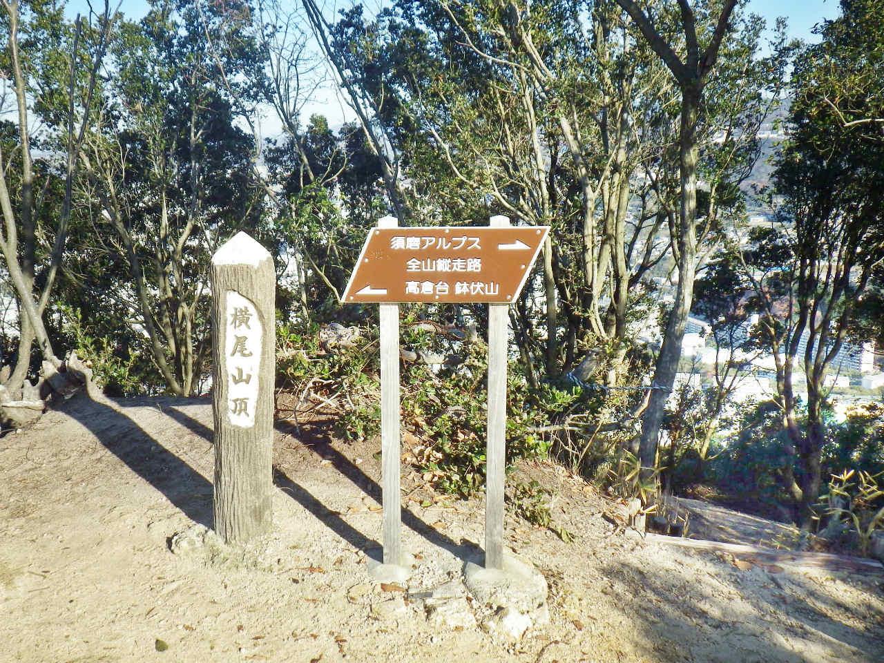 09a 横尾山の山頂