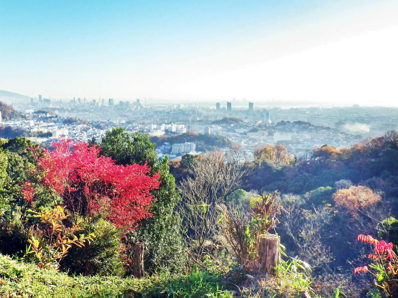 04b 登山道から神戸市街の眺め