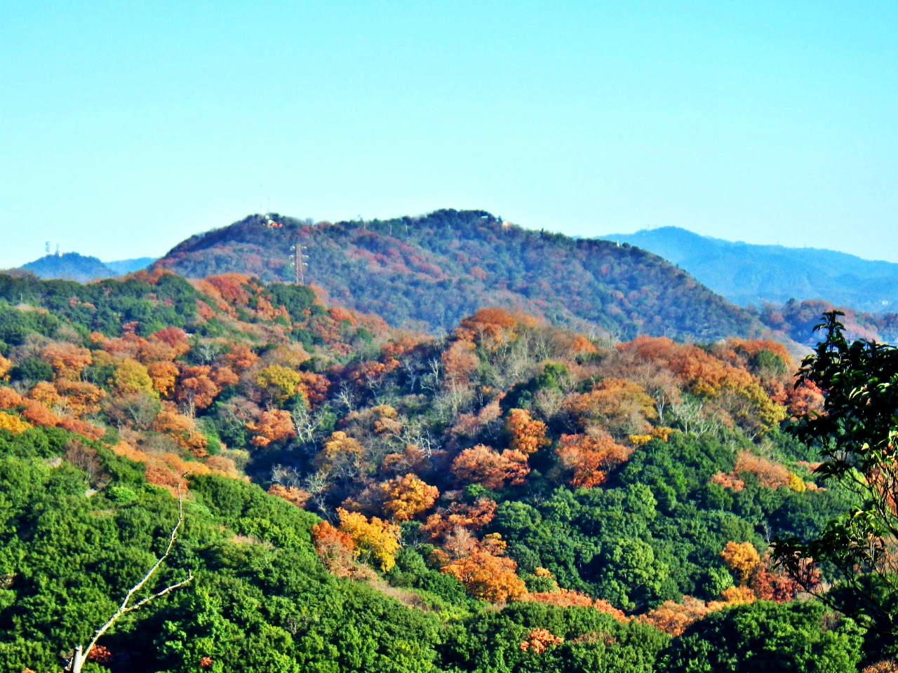 14b 高取山の眺め