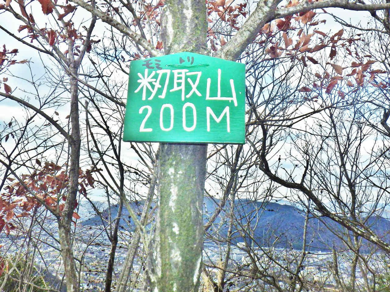 13b 籾取山の山頂