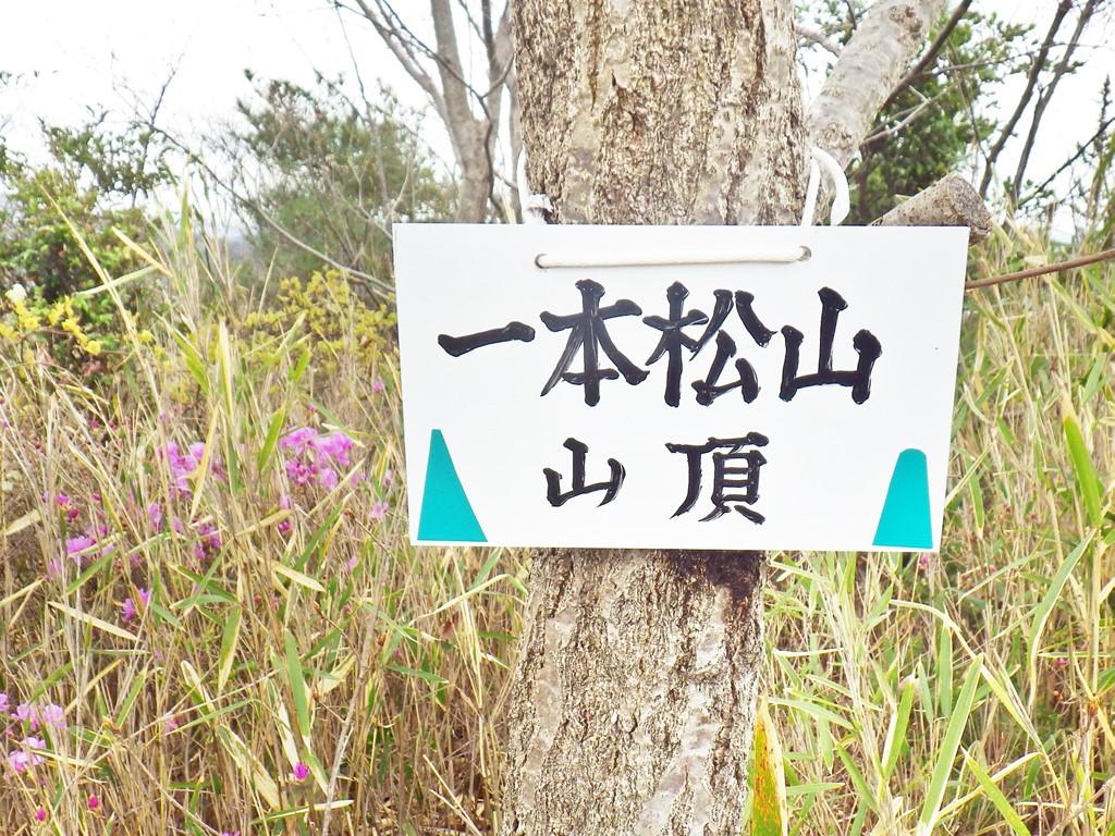 14b  一本松山頂の標識