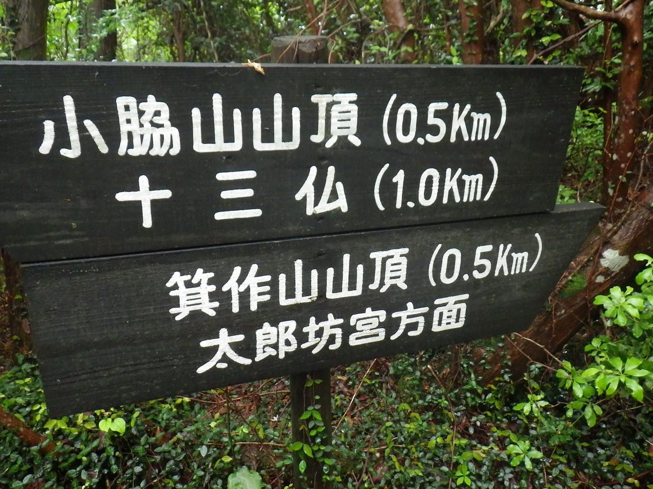 11b 箕作山山頂への標識