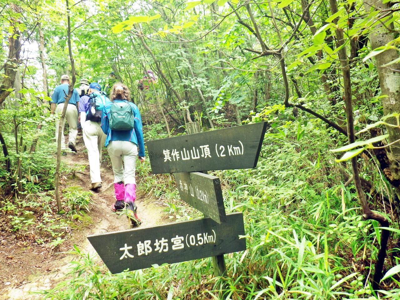 15a 太郎坊山の山頂に向かう