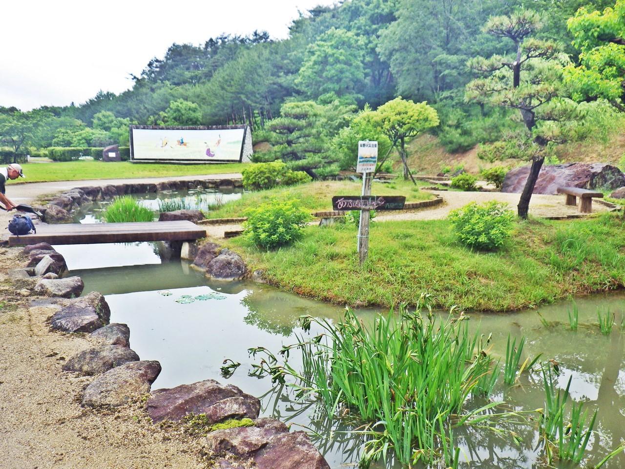 02a 万葉の森 船岡山公園