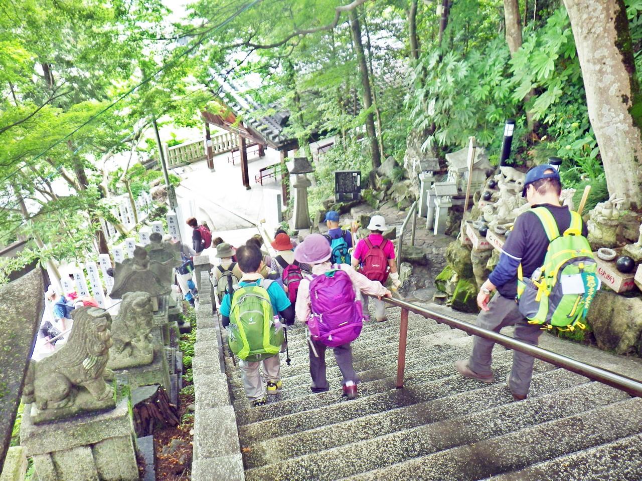 19a 太郎坊宮の階段を下る