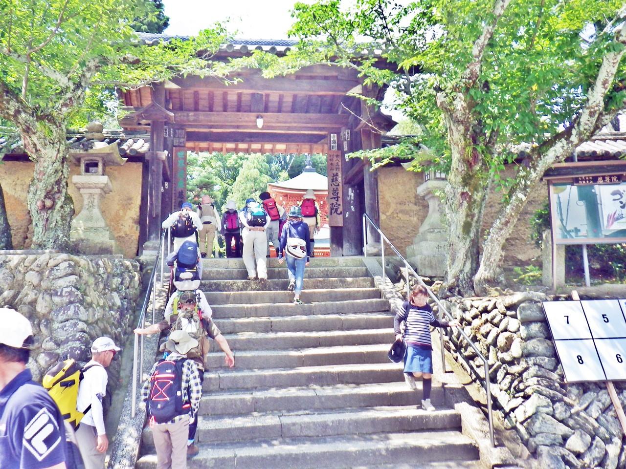 05a 慈尊院の山門