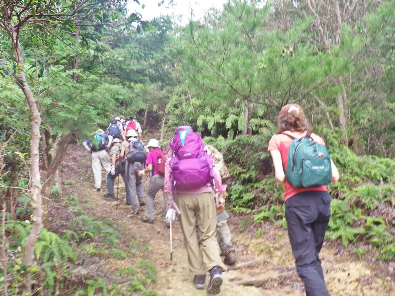 05a 松の木も多い登山道