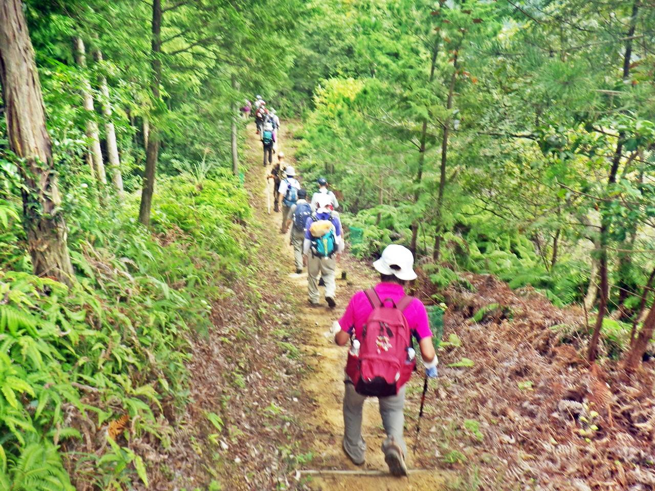 08b 整備された稜線の登山道