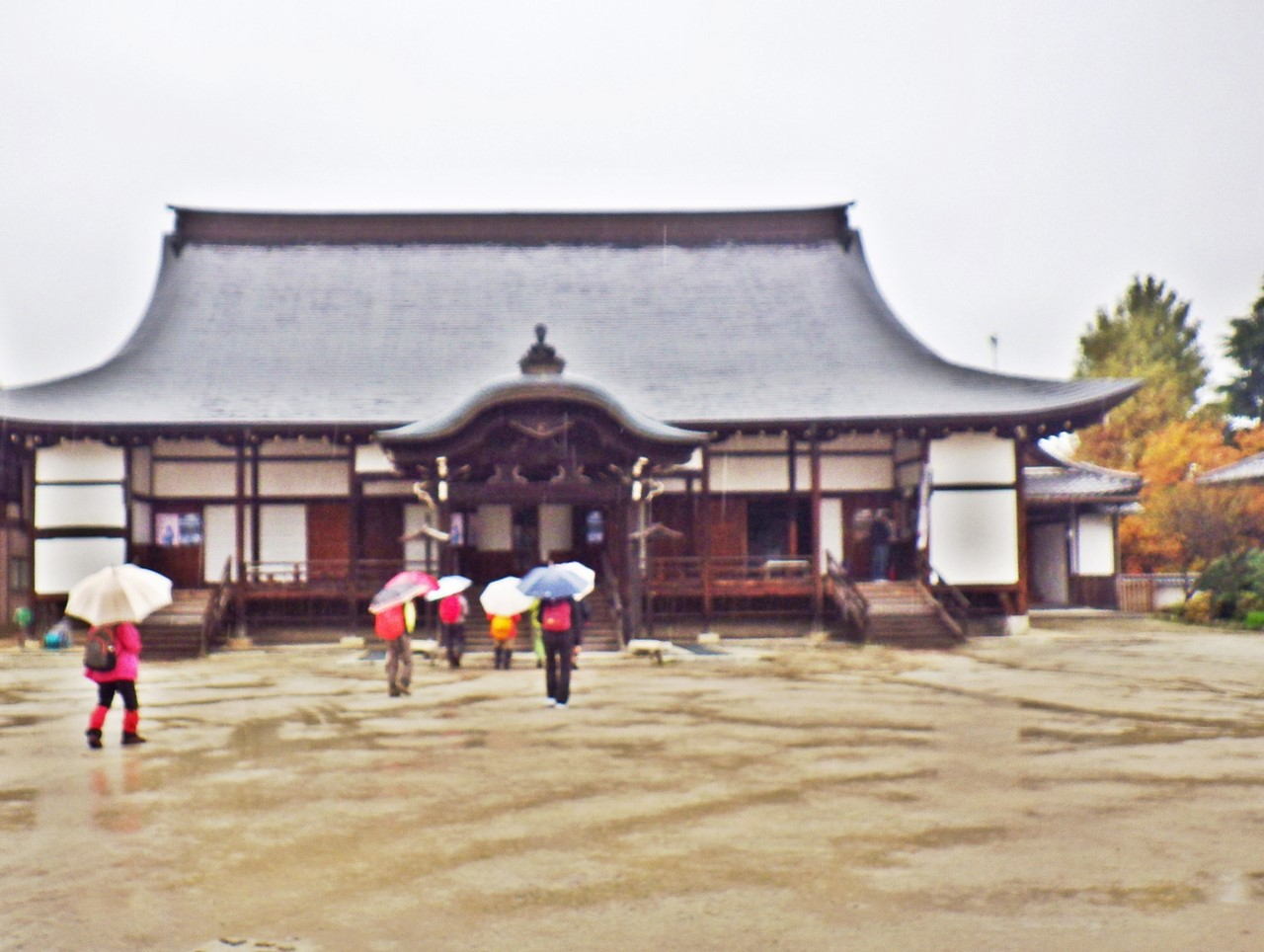15b 生源寺の本堂