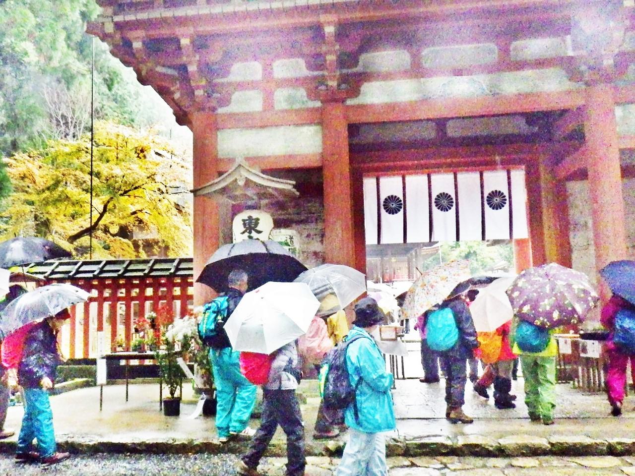 14a 東本宮の桜門