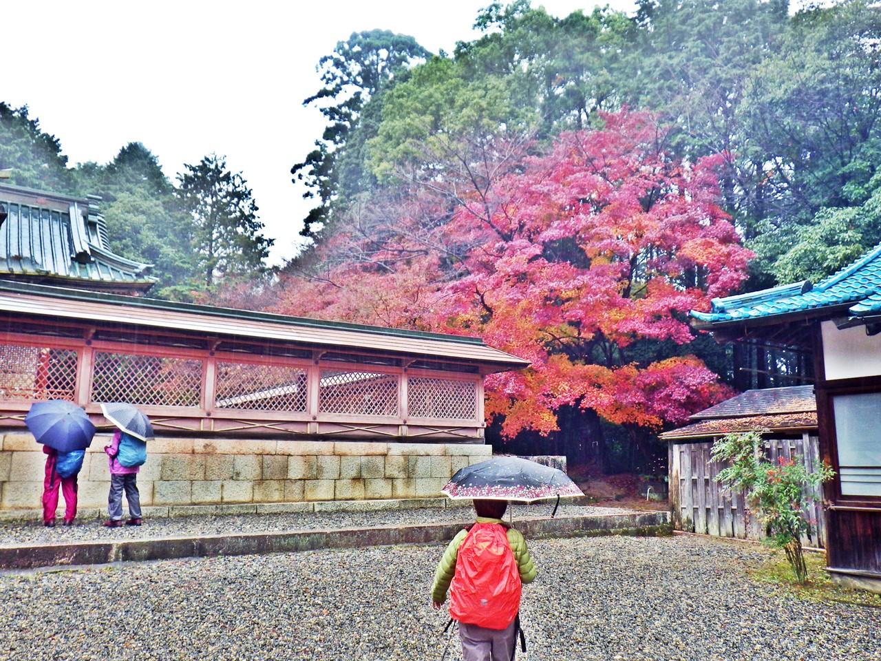 08b 日吉東照宮の紅葉
