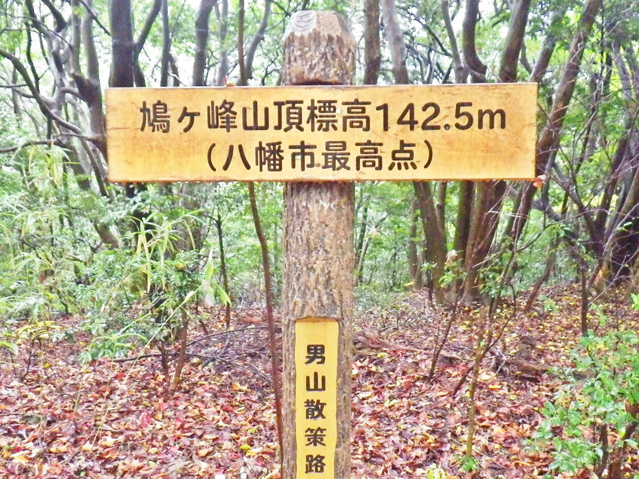 08a 鳩ヶ峰山頂の標識