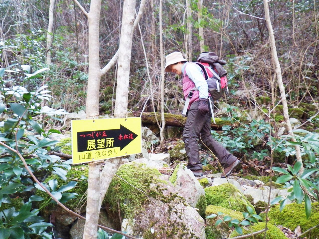 12b 赤松道を登る