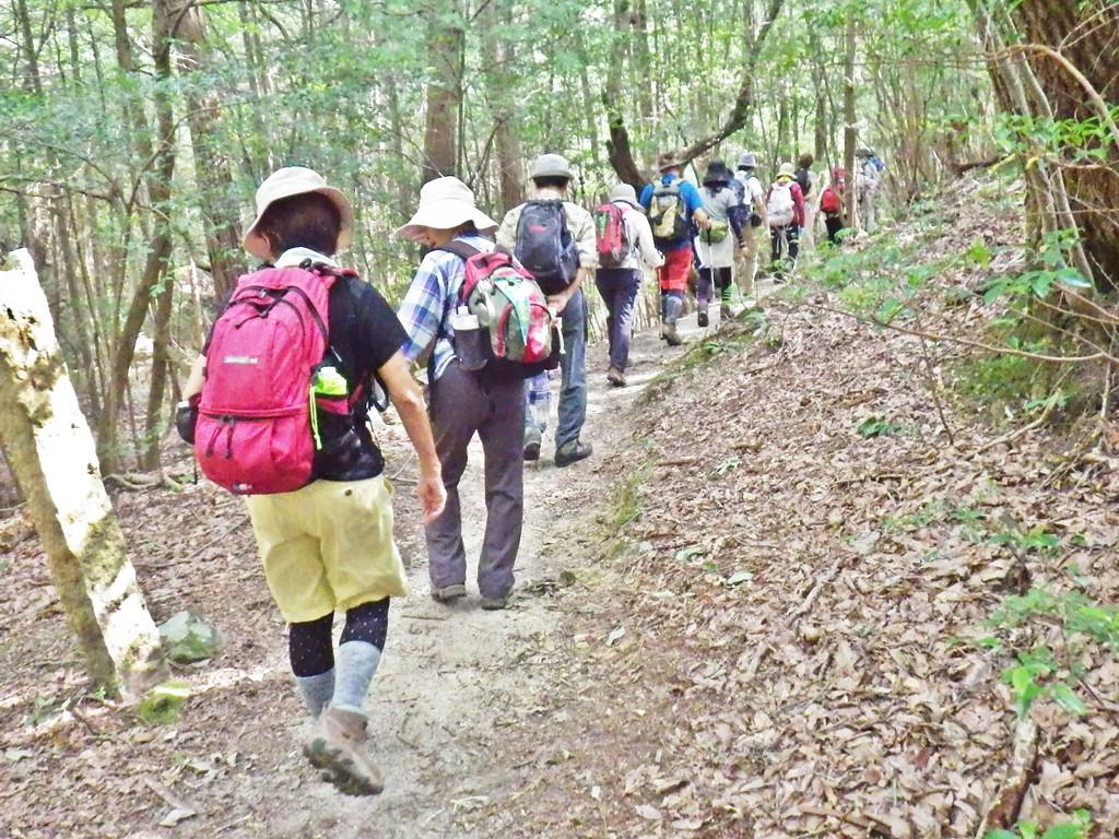 02a 登山道を登り始める