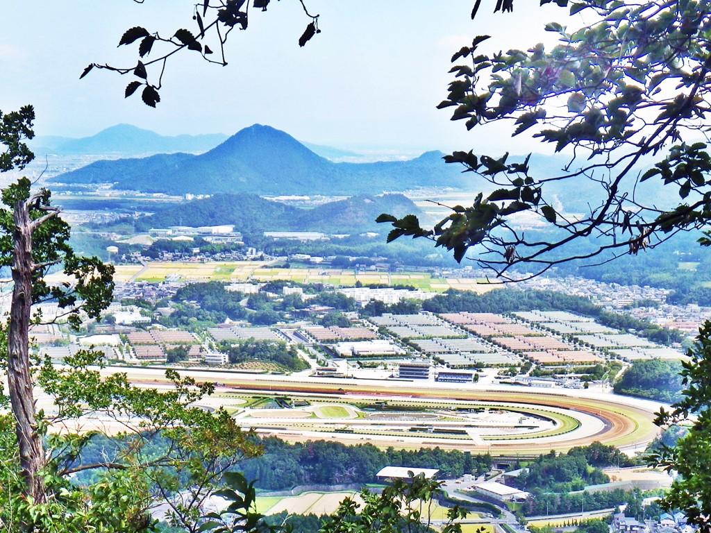 04b 近江富士と調教馬場