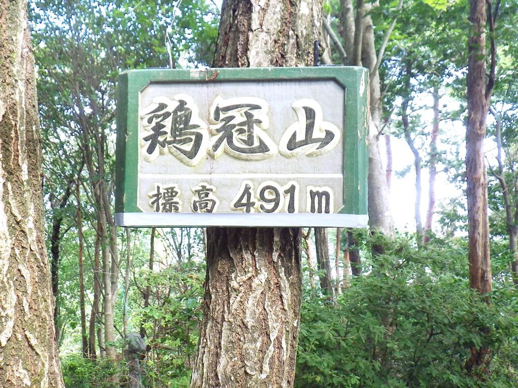 05a 鶏冠山の山頂標識