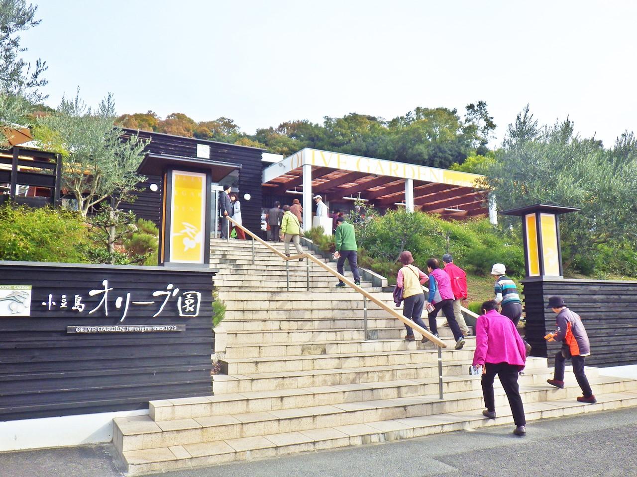 25a 小豆島オリーブ園